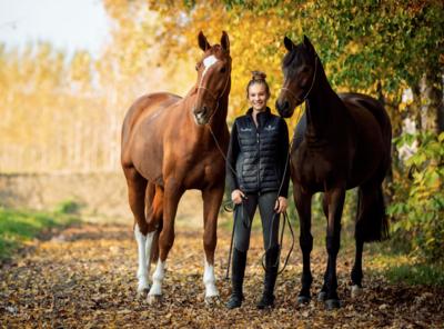 Mädchen mit zwei Pferden